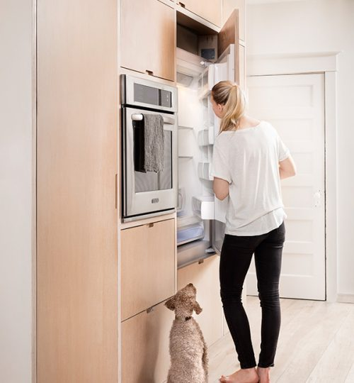 Modern kitchen renovation Toronto (cabinets)